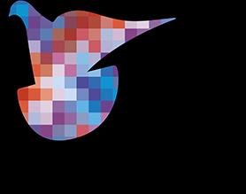 Home Pigeon Pixels