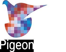 Pigeon Pixels Logo